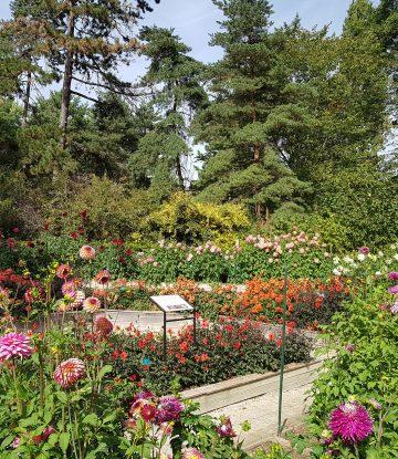 parc floral vincennes