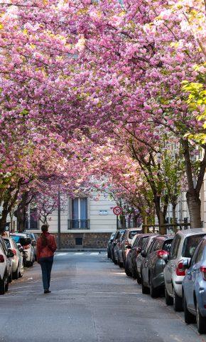 rue villebois vincennes