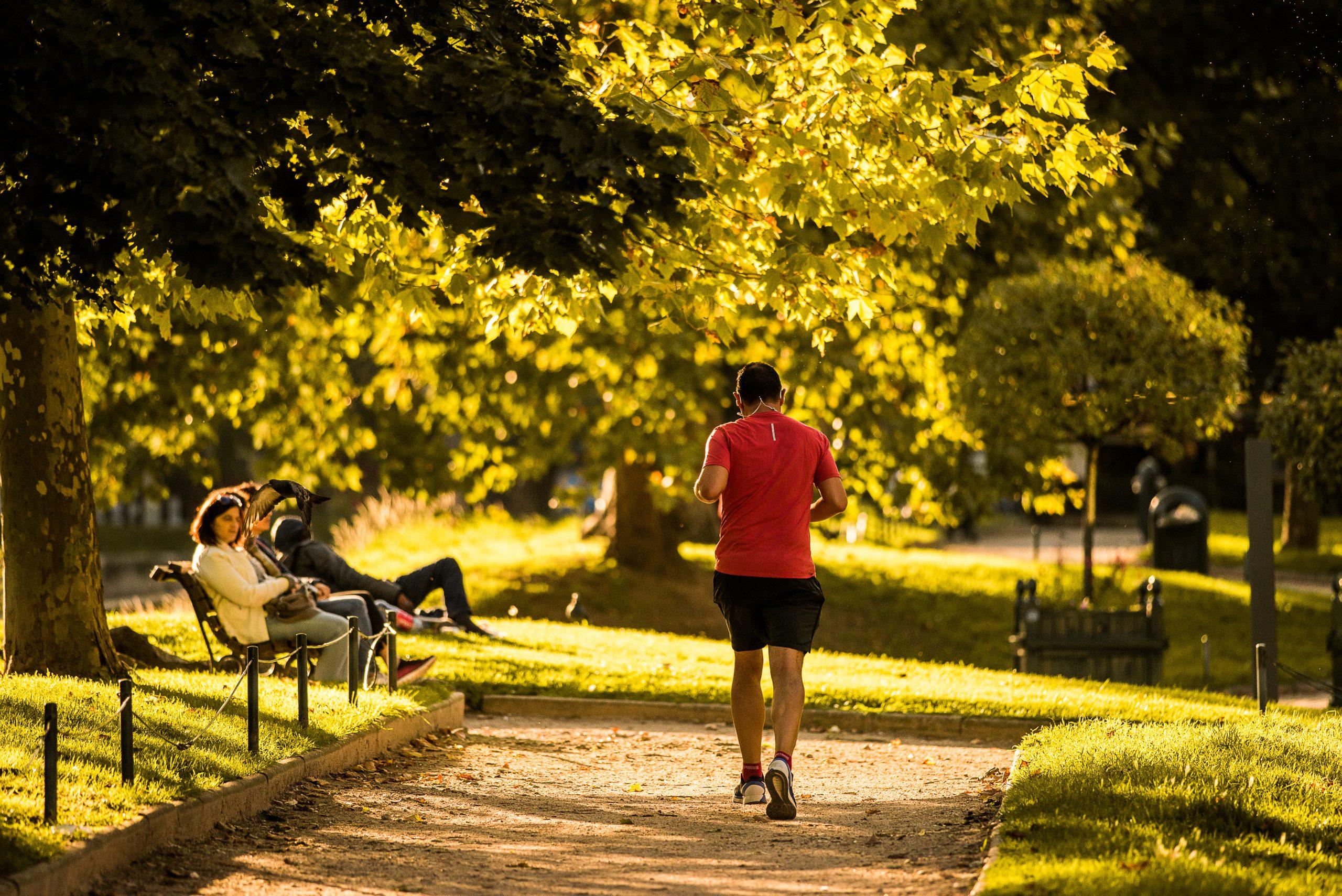 Jogging dans le Bois